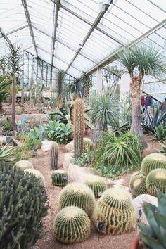 Kew Botanical Gardens, London by /aprileveryday/