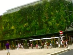 Nature strikes back, Les Halles, Orleans, France. What a wonderful idea for the use of hill sides that have been 'cut off '!