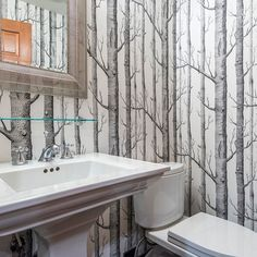 Birch Tree Wallpaper Design Ideas, Pictures, Remodel, and Decor - page 2