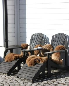 Schapenvacht, vachten, tuin, terras, wooninspiratie, sheepskin, scheepskin rug, rugs, sheepskin, www.dutchskins.com