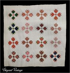 Antique 1860's Bears Paw Quilt *STUNNING Intricate Hand Quilting