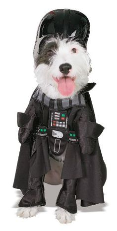 Pet Star Wars Costumes for Halloween Pets wearing costumes has been going on for years, and this adds to the Halloween experience. Now, Star Wars costumes for dogs are available for many characters.  Image from Amazon.