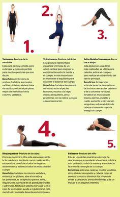 Posturas para iniciarte en Yoga | Revista CiudadYOGA