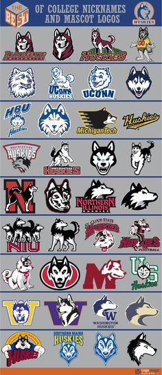 The Best of College Nicknames and Mascots logos College Football Logos, Sports Team Logos, College Sport, Sports Decals, Sports Art, Husky Logo, Dog Walking Business, Dog Illustration, Illustrations