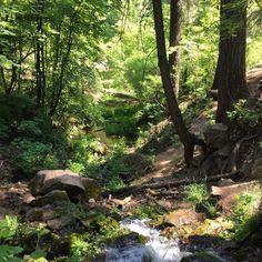 Horton Springs near Payson   Backpacking   Hiking   Waterfall   Spring   Water   Travel