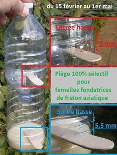 Piège à frelon asiatique sélectif, modèle par lAAAFA Water Plants, Garden Plants, Hornet Trap, Diy Jardim, Life Hacks Diy, Garden Online, Garden Deco, Tips & Tricks, Green Life