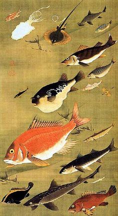 """Reptiles and Insects: Fish"" by Ito Jakuchu by her royal haecness, via Flickr"