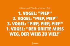 Einen Vogel? Haben wir! :-D Link zum Tagebuch: https://www.facebook.com/wendweb/?fref=ts