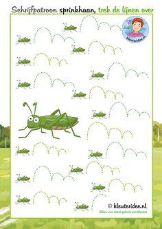 Trek de lijn over, schrijfpatroon sprinkhaan, thema insecten voor kleuters, kleuteridee, free printable.