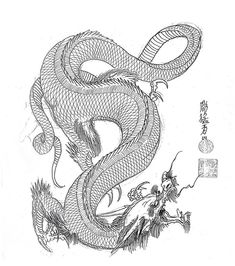 Dragon Head Drawing, Dragon Artwork, Japanese Tatoo, Japanese Dragon Tattoos, Chinese Dragon Art, Alchemy Tattoo, Japan Tattoo Design, Dragon Sketch, Asian Tattoos