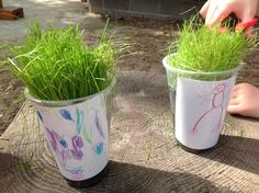 Our grass heads have grown heaps and are ready for a trim! We are busy role playing hair dressers, and showing off our new styles. We are also discussing how to care for our grass at home. - Gowrie Victoria