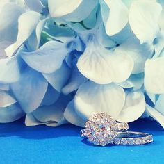Color us enchanted!  #color #blue #flowers #flower #hydrangea #ring #engagement #bling #sparkle #fire #rainbow #marryme #diamond #diamonds #CDI #jewelrygram #jewelry #summer