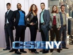 CSI: NY I can't believe they got cancelled :-(