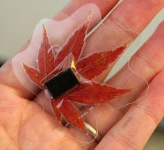 Laminated Autumn leaf magnets