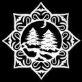 Hvězda s ornamentem - stromy
