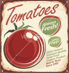 Retro Tomato vector by Lukeruk on VectorStock®