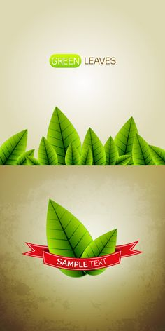 FREE Text Effects, Green Leaves, Free Design, Vector Free, Vectors, Graphic Design