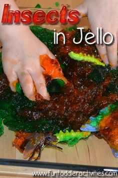 Mini beasts in jelly - this would make a messy but fun sensory experience.