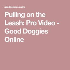 Pulling on the Leash: Pro Video - Good Doggies Online