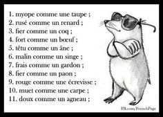 Expressions avec les animaux, famous except nbr 7 French Phrases, French Words, French Quotes, French Sayings, French Language Lessons, French Language Learning, French Lessons, French Teaching Resources, Teaching French