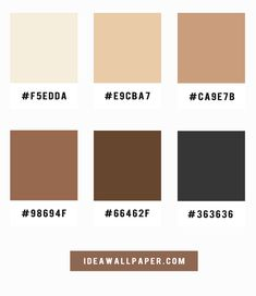 Shades of latte and coffee color scheme, A pretty color palette of coffee and latte , neutral color scheme, color schemes ,color palttes Beige Color Palette, Neutral Color Scheme, Colour Schemes, Pantone Colour Palettes, Pantone Color, Coffee Colour, Aesthetic Colors, Decoration, Blue Grey