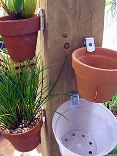 Pot Klips - These pot hangers fasten to a wall and then the pot slips right in. The shape of the hanger is designed to securely grab the pot and hold it securely in place. Works best with clay pots and we love using these to hang our orchids outside during the summer months.