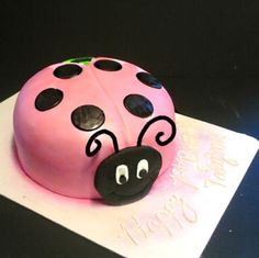 Fun Ladybug Cake for everyone