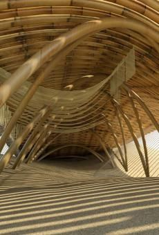 """bamboo architecture in competition and exhibition""的图片搜索结果"