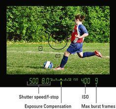 Understanding the data in the viewfinder, for those who are used to using their LCD screen.