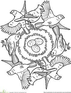 First Grade Animals Mandalas Worksheets: Bird Mandala