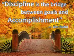 3-Discipline-is-the-bridge-between-goals-and-accomplishment.png (880×671)