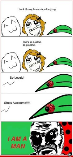 How do u tell the difference between a male ladybug and a female ladybug? comment down below if you know