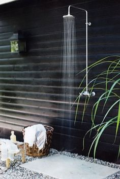 Near future project. Outdoor shower.