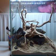 First hardscape