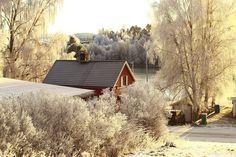 (37) Quora Arctic Blast, Winter Scenes, Cabin, House Styles, Home, Decor, Decoration, Cabins, Ad Home
