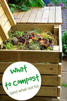 What To Compost and What Not to Compost #gardening