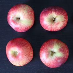 ÆBLECHUTNEY - Apple-chutney