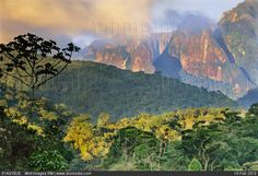 Time for some virtual travel to these stunning national parks across the globe. Pictured: rainforest and granite mountains, Serra dos Orgaos National Park, Rio de Janeiro, Brazil. Rio Grande, National Geographic, Frans Lanting, Park Around, Animal Species, Travel Images, South America, Monument Valley, National Parks