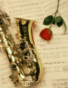 I love how the Sax can be seductive and romantic, but also tough and a total party maker. Piano Music, My Music, Rose Music, Saxophone Music, Music Images, Music Pictures, Music Aesthetic, All About Music, Music Photo