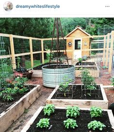 For the veggie patch