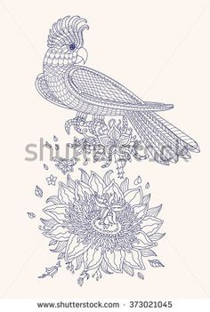 Vector fantasy stylized cockatoo jungle parrot silhouette.Exotic bird, fantastic flowers, branches, leaves. Contour thin line drawing..T-shirt print. Coloring book page for adults and children.