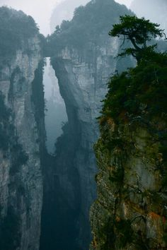 Incredible Split Chalk Mountains in the Fog, China