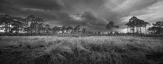 Photographs – Clyde Butcher | Black & White Fine Art Photography