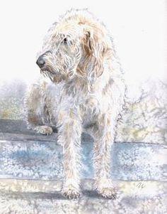 LABRADOODLE Dog LARGE Art Print by Artist DJR