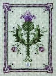 Scot's thistle (national emblem of Scotland)