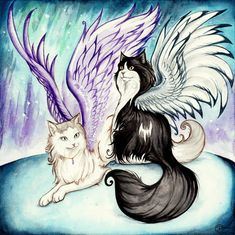 Cats of the Northern Lights by starwoodarts on DeviantArt