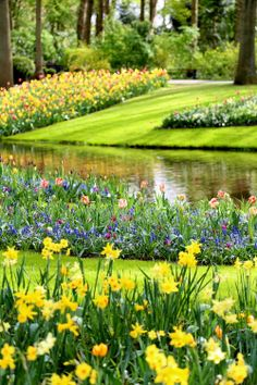 Keukenhof — Finding the Extraordinary in the Ordinary Beautiful Flowers Garden, Beautiful Flower Arrangements, Beautiful Gardens, Tulips Flowers, Spring Flowers, Tulip Fields Netherlands, Beautiful Places, Beautiful Pictures, Pretty Landscapes