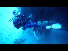 Spear Fishing Videos, Deep Sea Scuba Diving, Florida Keys - http://www.florida-scubadiving.com/florida-scuba-diving/spear-fishing-videos-deep-sea-scuba-diving-florida-keys/