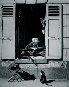 Concierge with Cats Paris cat photography by Brassai - aka Gyula Halasz Andre Kertesz, Vintage Paris, Vintage Cat, Vintage Photography, Street Photography, Cat Photography, Fashion Photography, Chat Paris, Paris Cat