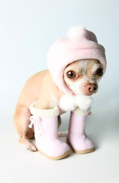 Adorable!   ..........Pink boots and hat. .click here to find out more     | http://baby-animals-957.blogspot.com